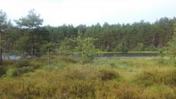 Rezerwat Motowęże